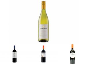 Meest populair Chilieense wijn kopen